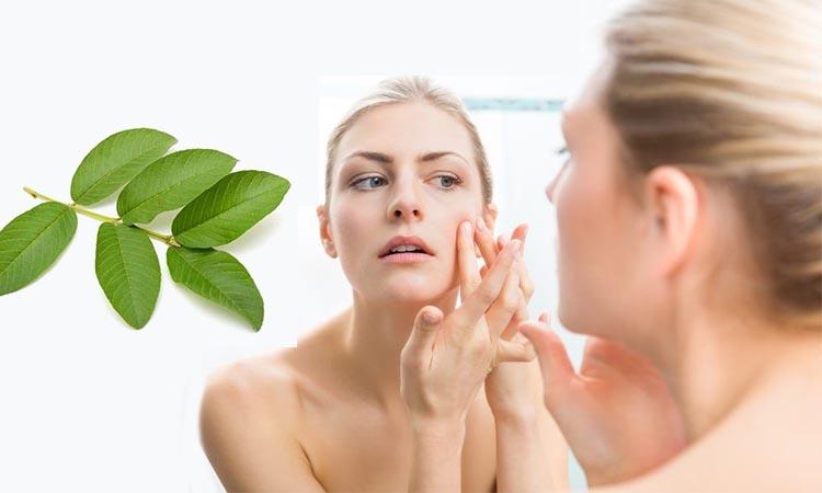 manfaat jambu biji untuk wajah