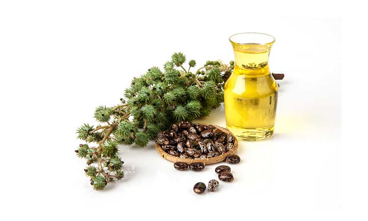 evamulia clinic - manfaat castor oil