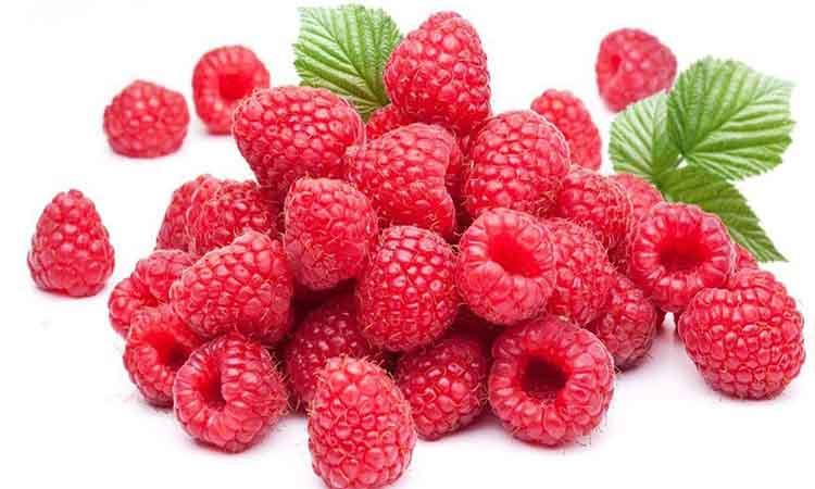 manfaat raspberry untuk kulit