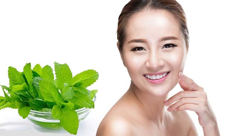 Eva Mulia Clinic - manfaat daun mint untuk wajah