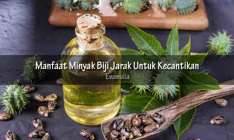 Evamulia - manfaat minyak biji jarak - minyak biji jarak - Minyak biji jarak adalah minyak dari tanaman jarak (riccnius communis) yang sering dipakai untuk kebutuhan medis.