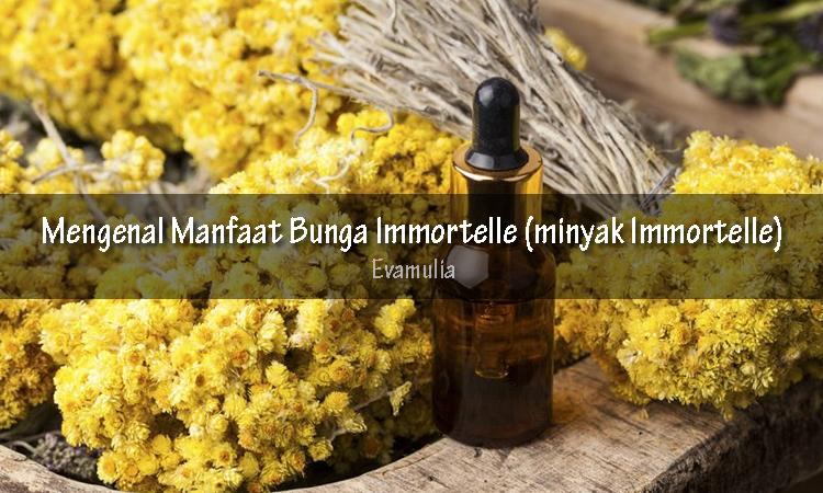 Klinik eva mulia - (minyak Immortelle) - manfaat Immortelle - Immortelle dijuluki sebagai bunga abadi yang tak hanya cantik tetapi memiliki manfaat untuk kesehatan sekaligus kecantikan kulit.
