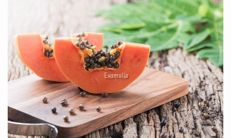 evamulia - manfaat getah pepaya untuk kulit - masker pepaya - getah pepaya untuk kecantikan kulit - Buah pepaya merupakan salah satu buah tropis yang banyak tumbuh di Indonesia.