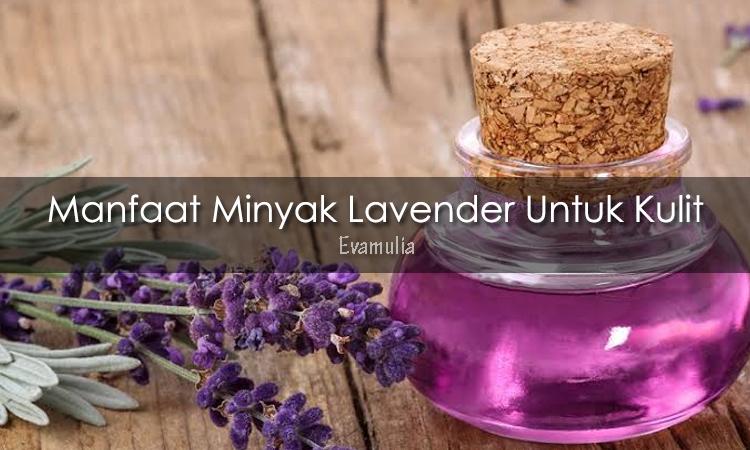 Eva mulia klinik - Klinik eva mulia - Tips Kecantikan - Minyak lavender - Seperti yang sudah kita ketahui, perawatan kulit dalam hal kecantikan sedang marak dan telah naik daun