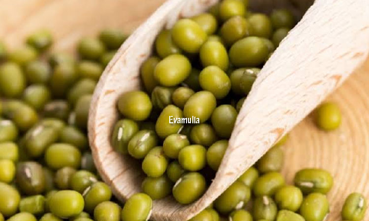 Klinik Eva mulia - Eva mulia clinic - Tips kecantikan - klinik kecantikan - manfaat kacang hijau untuk kecantikan - kandungan kacang hijau - Kacang hijau adalah jenis kcang-kacangan untuk dikonsumsi yang seringkali diolah menjadi be