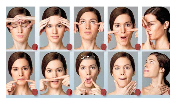 Klinik Eva mulia - Eva mulia clinik - Klinik wajah - tips perawatan wajah - Manfaat senam wajah - Memiliki wajah sehat serta cantik menjadi dambaan setiap orang.