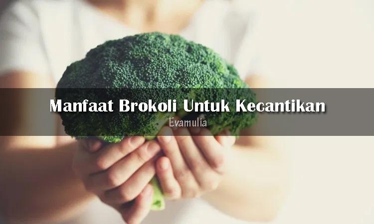 Evamulia klinik - klinik evamulia - klinik kecantikan - tips perawatan wajah - manfaat brokoli - Brokoli adalah salah satu makanan berjenis sayuran yang memiliki banyak kandungan gizi serta vitamin dan protein yang baik untuk tubuh kita