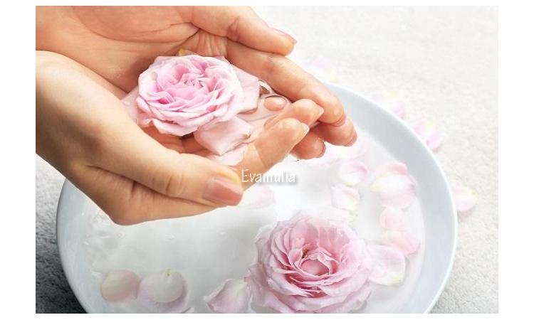 Eva Mulia - Klinik Kecantikan - Manfaat Bunga Peony Untuk Kulit - Tips Perawatan Wajah - Bunga Peony adalah salah satu jenis bunga tertua yang terlah tumbuh sejak 4.000 tahun lalu. Bunga dengan kelopak dan warna-warna pastel ini sering dimanfaatkan untuk dekorasi kuil, taman atau rumah bangsawan.