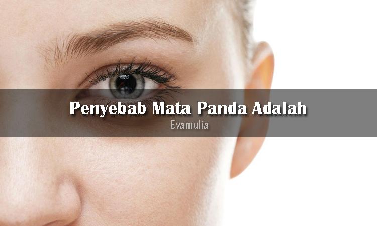 Eva Mulia - Klinik Evamulia - Tips Perawatan Wajah - Penyebab Mata Panda - Mata panda atau lingkar hitam pada bagian bawah mata sering dikatakan karena kurang tidur. Akan tetapi, kurang tidur bukan satu-satunya penyebab mata panda timbul. Orang yang dehidrasi, mengalami penuan dini atau menderita penyakit tertentu juga memiliki mata panda