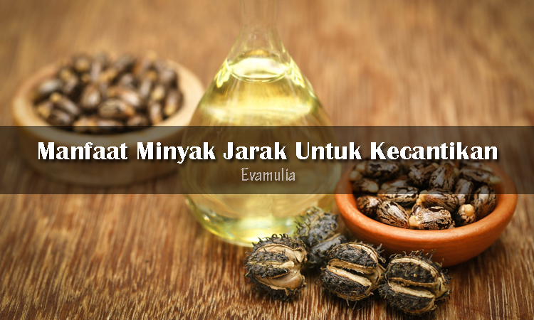 Eva Mulia - Klinik Evamulia - Minyak Jarak Untuk Kecantikan - Perawatan Wajah - Minyak jarak merupakan minyak minyak nabati yang digunakan untuk berbagai tujuan kosmetik dan medis. Minyak jarak dikatakan memiliki manfaat untuk kesehatan wajah dan kulit. Minyak jarak dikenal sebagai pencahar yang berkhasiat untuk mengobati lepra dan sifilis.