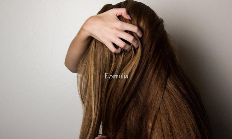 Eva Mulia - Klinik Evamulia - Cara Alami Merawat Rambut Rontok - Perawatan Wajah - Siapa sangka rambut rontok hanya dapat dirawat dengan menggunakan obat-obatan yang mengandung bahan kimia saja? Ada beberapa bahan alami yang bisa didapatkan disekitar kita untuk merawat rambut rontok.