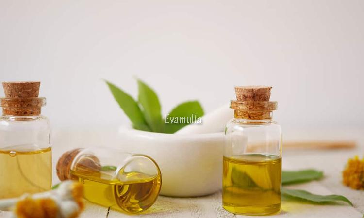 Eva Mulia - Klinik Evamulia - Manfaat Minyak Kamboja - Perawatan Wajah - Bunga kamboja memiliki ciri khas berupa warna cerah dengan aroma yang cukup kuat. Akan tetapi, keunikannya bukan hanya itu, bunga kamboja kerap dijadikan minyak esensial dengan segudang manfaat untuk kesehatan.