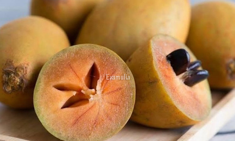 Eva Mulia - Klinik Eva Mulia - Perawatan Wajah - Manfaat Buah Sawo - Buah dengan warna coklat dan berdaging lunak ini menjadi salah satu buah yang banyak digemari. Akan tetapi, jangan hanya asal makan, karena buah ini menyimpan segudang khasiat kesehatan yang sayang untuk dilewatkan.