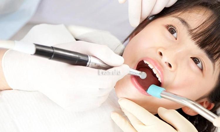 Eva Mulia - Klinik Evamulia - Perawatan Tubuh - Perawatan Pulpotomi Untuk Gigi - Menjaga serta merawat kesehatan gigi perlu dilakukan. Selain dengan cara sederhana seperti menyikat gigi setiap hari, hingga secara berkala datang ke dokter gigi untuk menjaga kesehatan dan kebersihat mulut dan gigi.