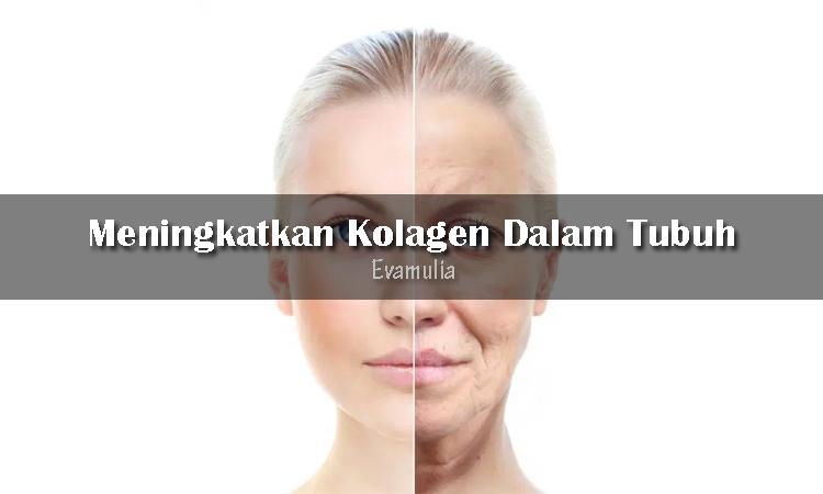 Eva Mulia - Klinik Evamulia - Perawatan Wajah - Cara Meningkatkan Kolagen Dlam Tubuh - Kolagen adalah rahasia awet muda yang tidak bisa kalian remehkan. Kenapa? Berkat kolagen, kulit kalian akan terlihat awet muda, kenyal, lembut, dan bebas keriput.