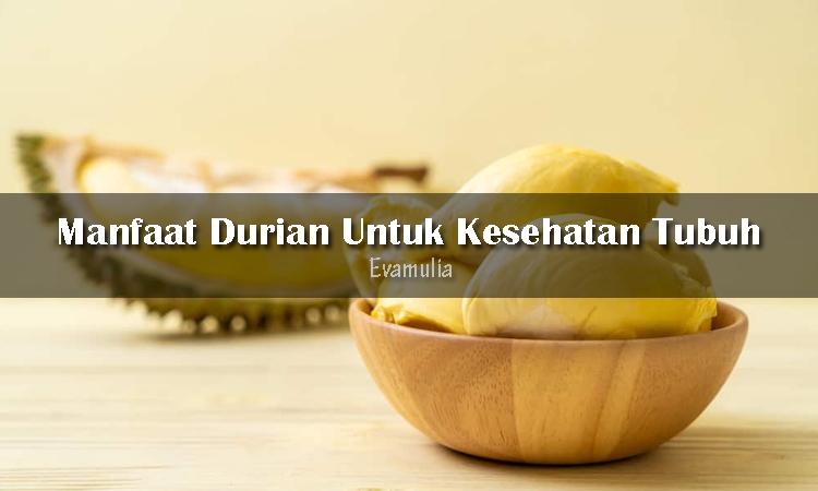 Eva Mulia - Klinik Evamulia - Perawatan Wajah - Manfaat Durian Untuk Kesehatan Tubuh - Buah yang identik dengan duri serta aroma yang menyengat ini ternyata bukan hanya enak untuk dikonsumsi. Durian mengandung ragam vitamin serta mineral, karbohidrat, lemak dan juga protein. Kandungannya tersebut memberi manfaat durian yang baik untu kesehatan tubuh kalian.