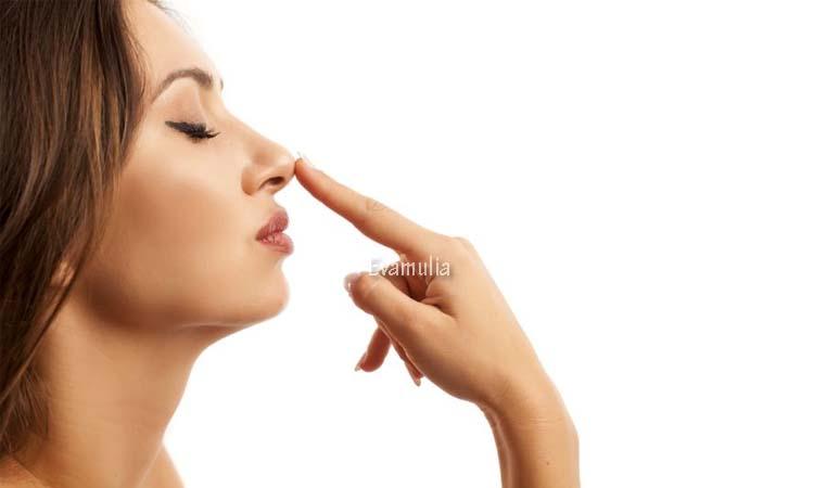 Eva Mulia - Perawatan Wajah - Mengetahui Penyebap Jerawat di Hidung - Kemunculan jerawat di hidung dan sekitar area wajah meng bisa membuat kita tidak nyaman, hal ini karena penampilan kita akan terganggu dengan ada jerawat di bagian wajah.