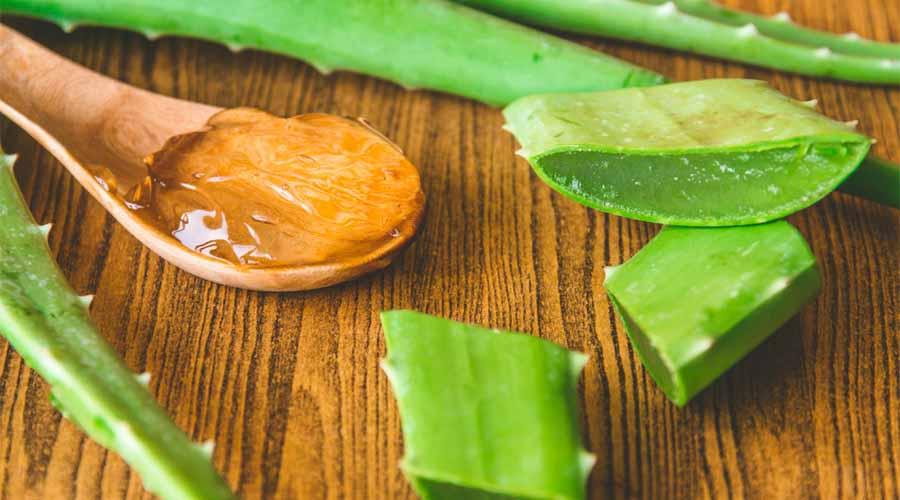Manfaat Aloe Vera Gel